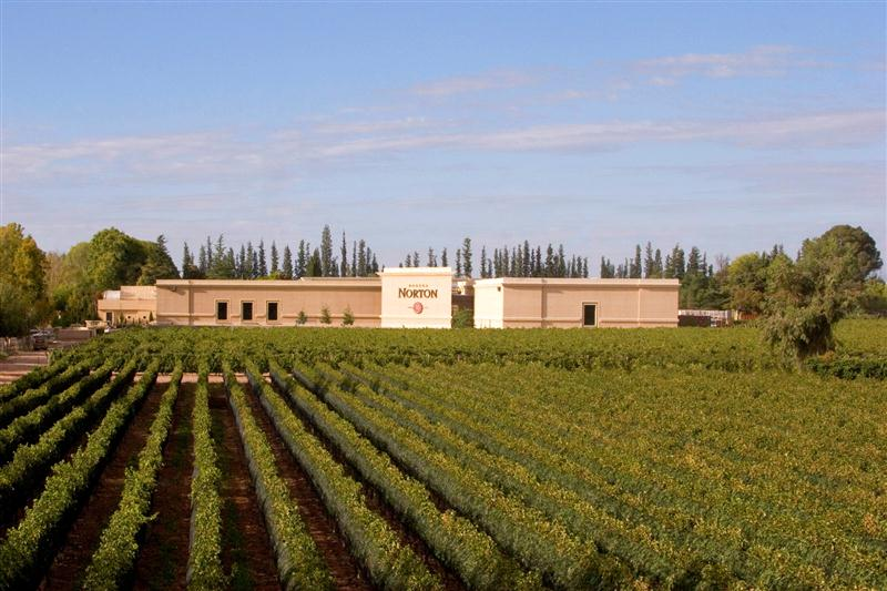 Vinícola e vinhedos em perfeita integração, no sagrado terroir de Perdriel