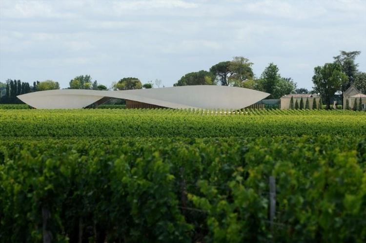 Vinhedos e Vinícola do Cheval Blanc