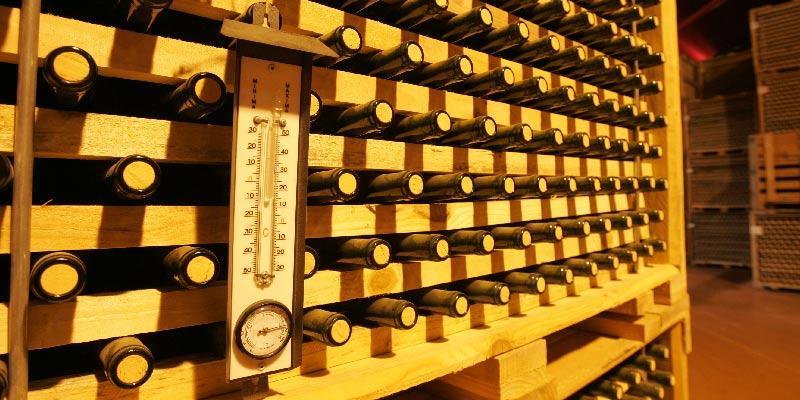 O tunel de armazenamento de garrafas guarda milhões de litros de vinho, em lento processo de envelhecimento
