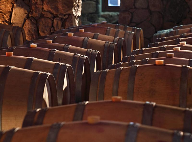 Barricas de carvalho francês, usadas com muito critério, no amadurecimento de todos os vinhos da Decero
