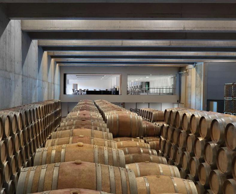 Sala de Barricas da Tobelos, local sagrado onde os vinhos fazem seu processo de amadurecimento ou crianza