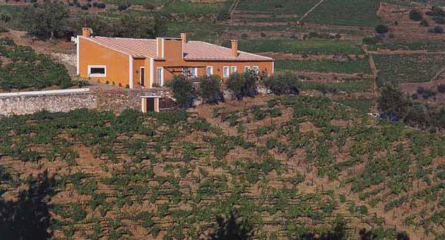 Vista da Quinta do Vale Dona Maria, no coração do Douro