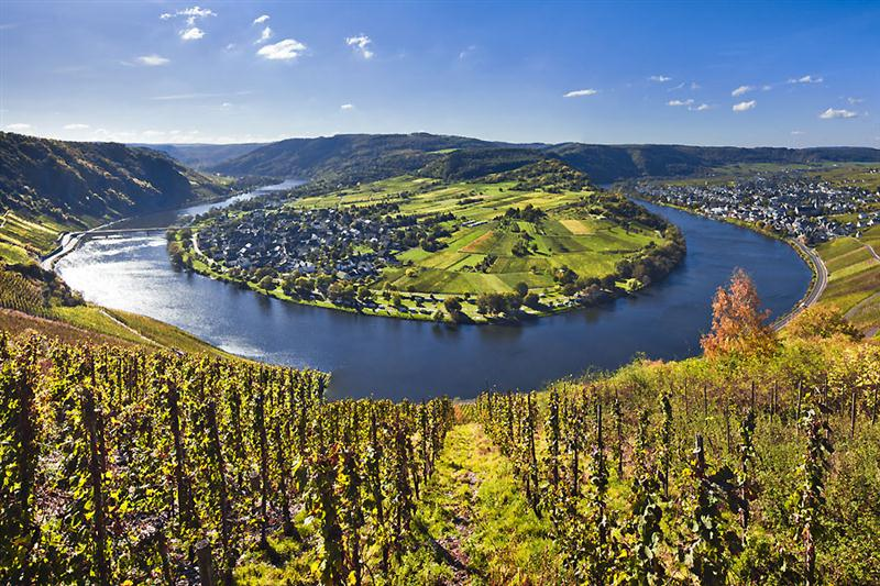 O Mosel, na Alemanha, com solo de ardósia pura, tem seus vinhos frequentemente associados ao conceito de mineralidade