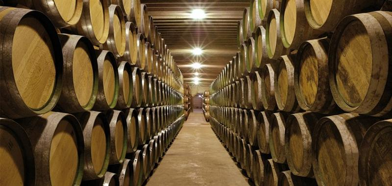 Sala de Barricas das Bodegas Muriel, onde se faz a Crianza, ou amadurecimento dos vinhos