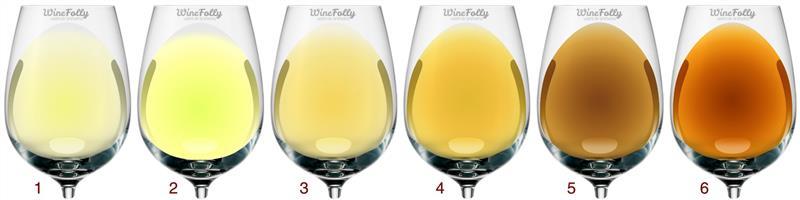 As diferentes tonalidades dos vinhos brancos no decorrer da vida - do amarelo -palha claro esverdeado ao âmbar