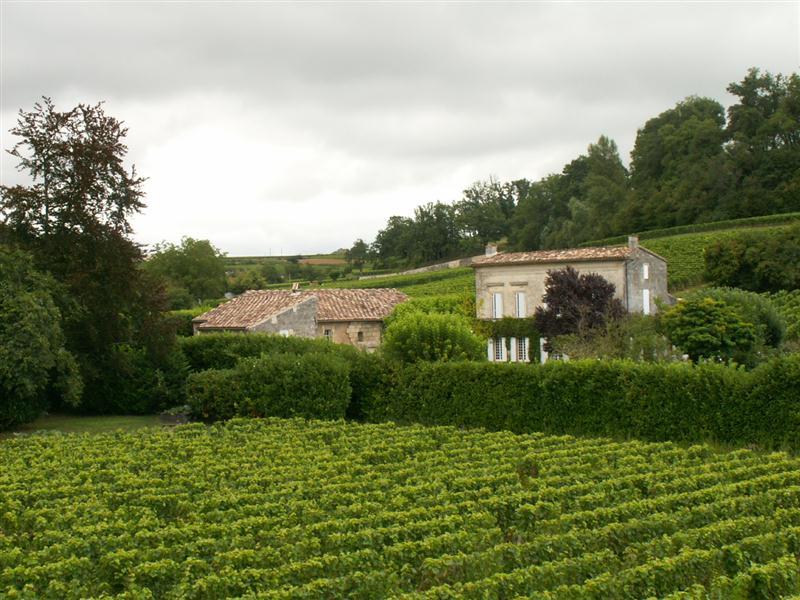 Château Pavie, outro grande vinho francês, agora promovido a Premier Grand Cru Classé, em Saint-Émilion