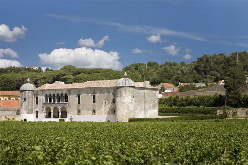 A imponente Quinta da Bacalhoa, origem de vinhos de alta gama em Portugal
